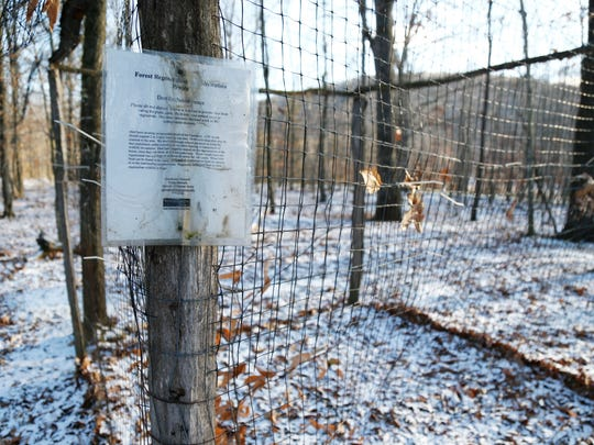 A deer exclusion fence at the Binghamton University Nature Preserve on Dec. 13, 2017.  Due to the large deer population in the preserve, several exclusion fences were constructed to monitor plant growth protected from deer.