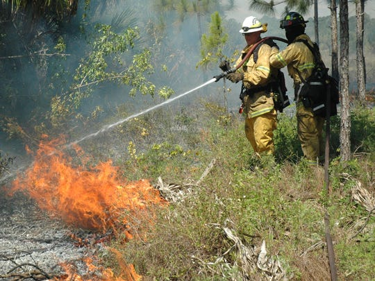 The Wildland Fire Expo is Saturday at George E. LeStrange Natural Area in Fort Pierce. Firefighters are pictured here putting out a wildfire at Bluefield Preserve in western St. Lucie County in 2014.