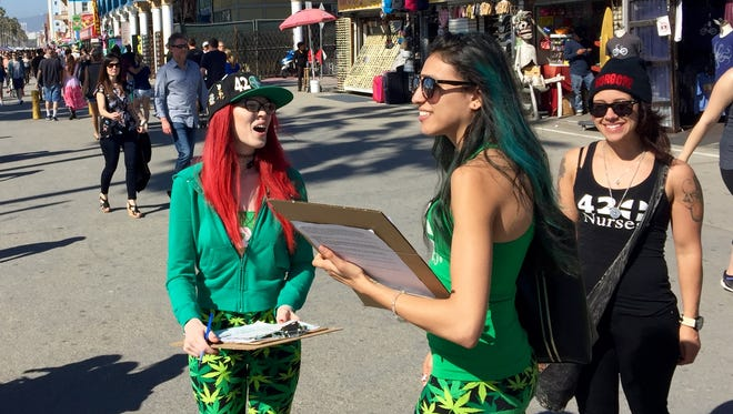 Signature-gatherers in marijuana-themed clothing call out to passersby at Venice beach as they collect signatures for a California marijuana legalization campaign.
