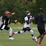 Bengals' Question of the Day