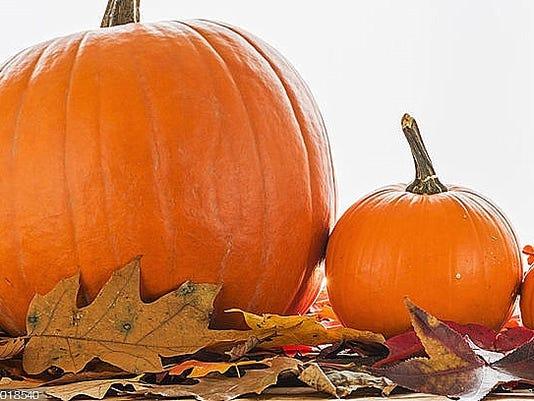 636427909360611061-pumpkins.jpg