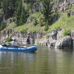 An angler casts as she makes her way down the Smith River. Less than 15 percent of applicants seeking to float the river were issued permits.