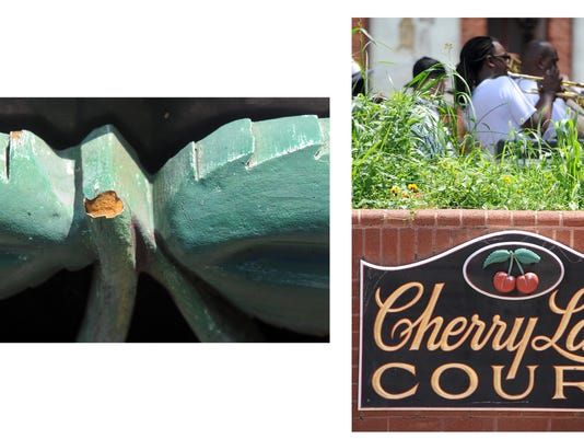 Closeup of the cherry stem from the Cherry lane Court sign outside of Central Market