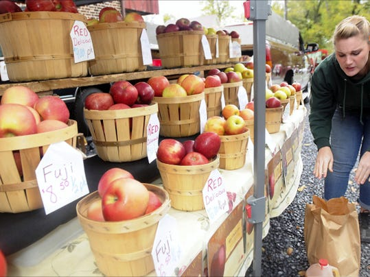 Megan Tracy of Tracy's Orchard sells apples of all types at the Apple Festival at Taymentasachta in Greencastle on October, 12, 2013.