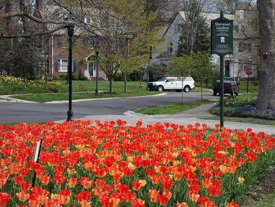 Sherwood Gardens is a hidden gem in Baltimore.