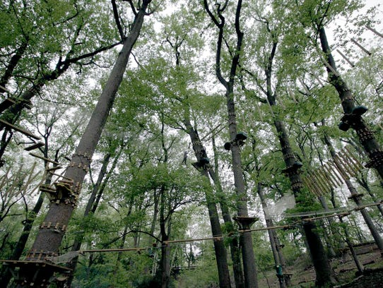 Take to the trees at Treetop Quest Philly.