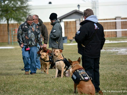 Service Dog Training Shreveport