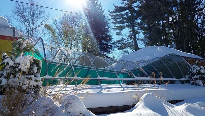 Snow caused a steel mesh roof to collapse on the Birds of Paradise exhibit at Norristown's Elmwood Park Zoo.