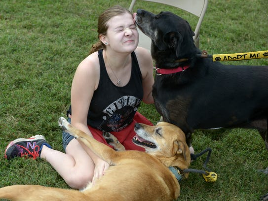 Williamson County Animal Center volunteer Holly Cline,