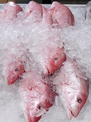 FILE - In this Nov. 30, 2005, file photo, a few whole red snapper are shown for sale at Joe Patti's Seafood Market in Pensacola, Fla. Two environmental groups have sued the federal government for stretching the red snapper season for recreational anglers while acknowledging that could add years to the species' recovery from nearly disastrous overfishing.