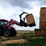 Drought has affected hay production in the Flathead Valley.