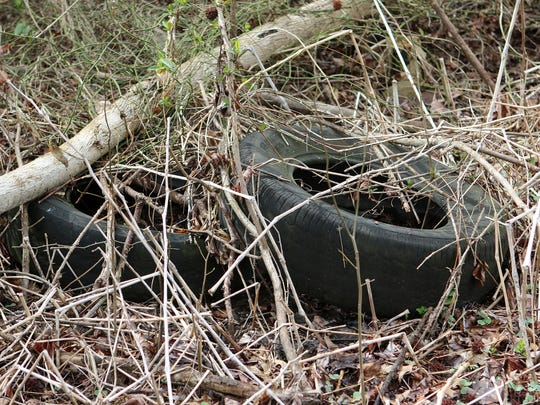 Pat Emory, director of the Office of Community Services for the State of Delaware, said that old tires and construction debris are some of the bigger items dumped alongside Delaware's roads.