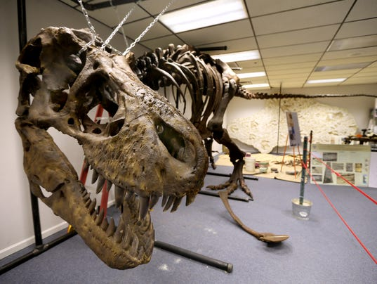 635792249304925783-001-Natural-History-Museum