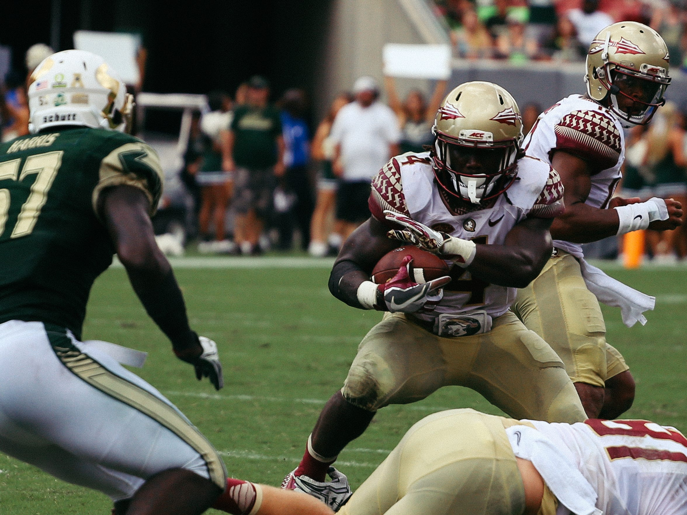 Cook's 267 yards rushing is the second-most all-time at FSU for a single game performance.