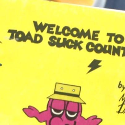 Toad Suck cartoon book