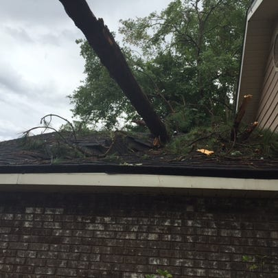 Tree into a garage in Fleming Island