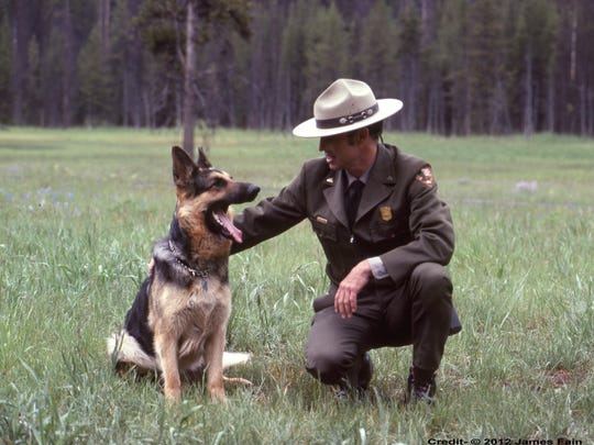 Ranger Jerry Mernin with his dog, Ross, in the 1980s in Yellowstone National Park. Mernin worked in Yellowstone National Park for 32 years. His adventures in the park are the subject of a new memoir.