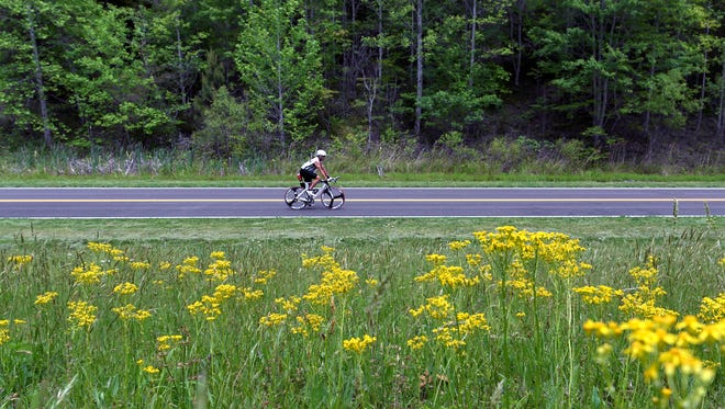 Wildflowers bloom as a cyclist rides on the Natchez Trace Parkway in Franklin on May 11, 2017.