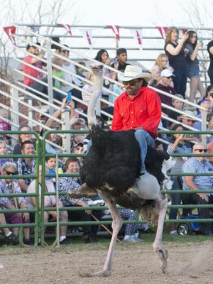 People enjoys Ostrich Festival at Tumbleweed Park in Chandler, Az., on March 10, 2017.