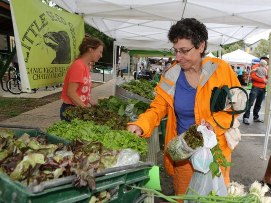 Cora Greenberg from Pleasantville looks over the produce at the Little Seed Gardens booth at the Pleasantville Farmer's Market, June 20, 2015. In the summertime, she buys over 50% of her food including meat, chicken and fish, at the markets.