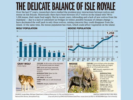 The delicate balance of Isle Royale