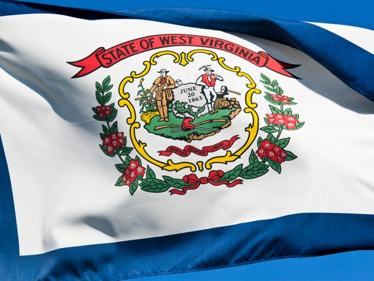 The flag of West Virginia blowing in a stiff breeze.