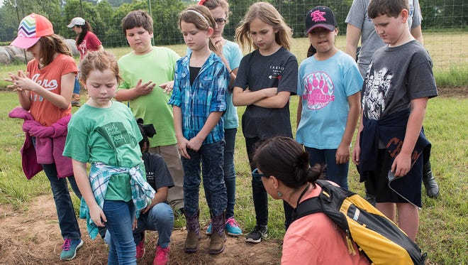 In this Wednesday, April 26, 2017 photo, Tyler ISD TARGET Academy students learn about plants such as banana trees during a field trip to Camp Tyler Outdoor School to learn about farming  in Tyler. Texas.