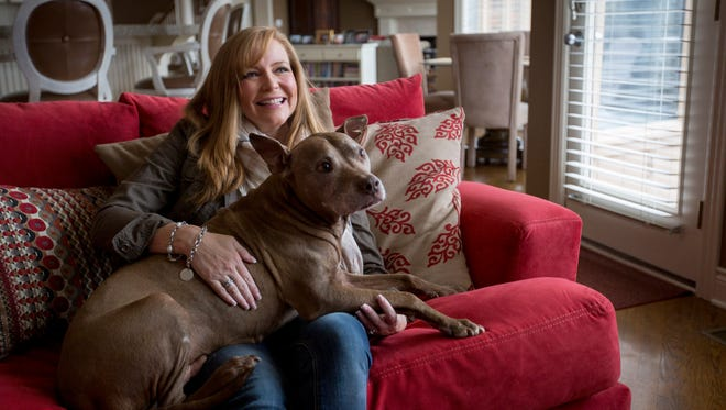 """Janelle Holland rescued her pit bull Triumph (she calls him """"T-Diddy"""") nine years ago.  He was found at age 2 and had been used as a fighting dog before Janelle got him.  Janelle says the dog is great with people and very friendly."""