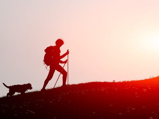 Girl walks in the mountains with his dog