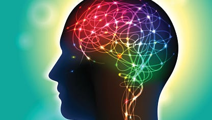 The scientific field of neuroscience — the study of the nervous system and the workings of the brain — has taken giant leaps forward in the last few decades.