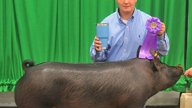 Hayden Smith was the Intermediate Showmanship Grand Champion and Supreme Showman in Swine Showmanship at the Holmes County Fair.