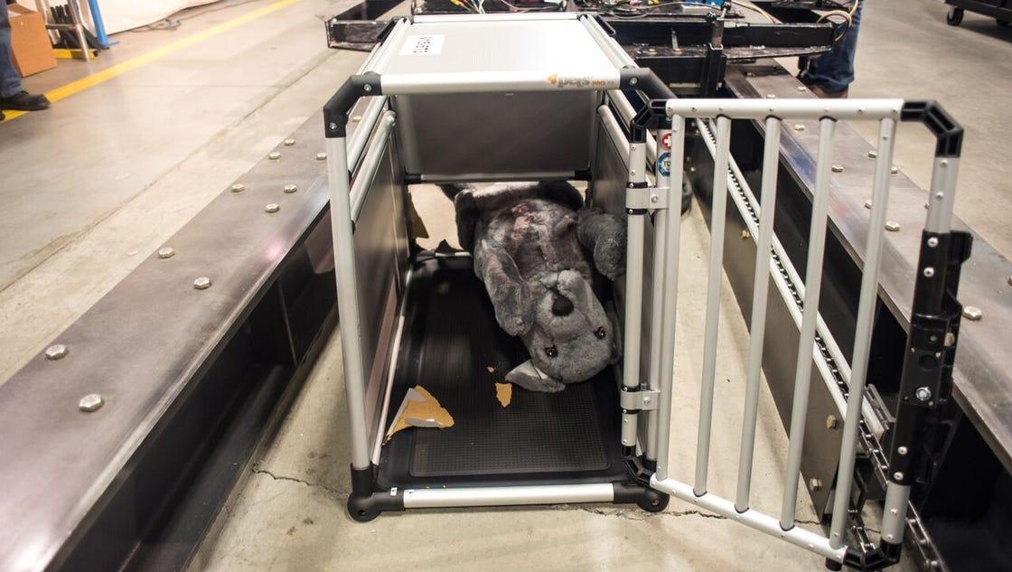 Pet Cargo Dog Crate