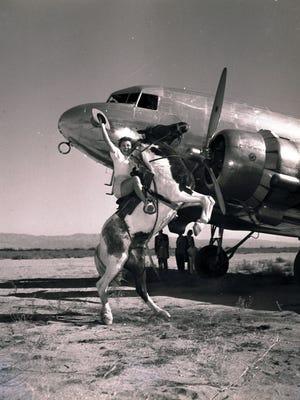 Western Airlines publicity shot c. 1955.
