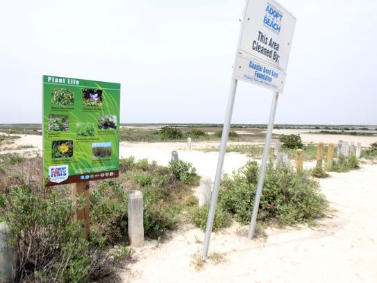 The trailhead signs at Packery Flats mostly educate visitors about plants and wildlife. Others warn visitors not to disturb nesting birds and to keep dogs on leash.