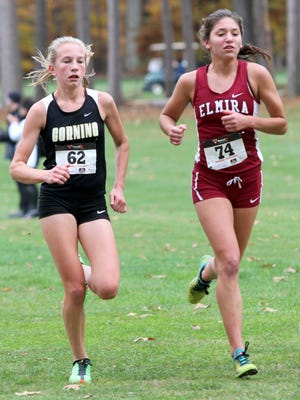 Jessica Lawson of Corning and Abbey Wheeler of Elmira run next to each other during the girls Class A race Thursday at the Section 4 cross country championships at Chenango Valley State Park. Lawson won the race to lead the Hawks to the team title.