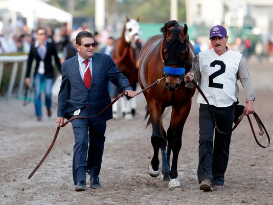 FILE - In this Saturday, Jan. 27, 2018 file photo, West Coast is led onto the track for the 12th race at the Pegasus World Cup Invitational horse race,  at Gulfstream Park in Hallandale Beach, Fla. Bob Baffert has a shot at becoming only the second trainer to win the $10 million Dubai World Cup horse race in successive years on Saturday March 31, 2018. Last year he did it with Arrogate. This year, his West Coast is the favorite. (AP Photo/Lynne Sladky, File)