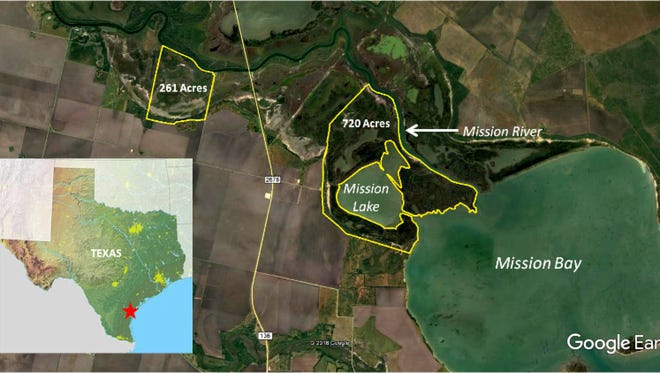 The Coastal Bend Bays & Estuaries Program purchased two properties totaling 981 acres as prime whooping crane habitat not far from the Aransas National Wildlife Refuge where the birds spend winter.