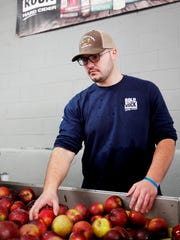 Grant Chapman washes apples before sending them through