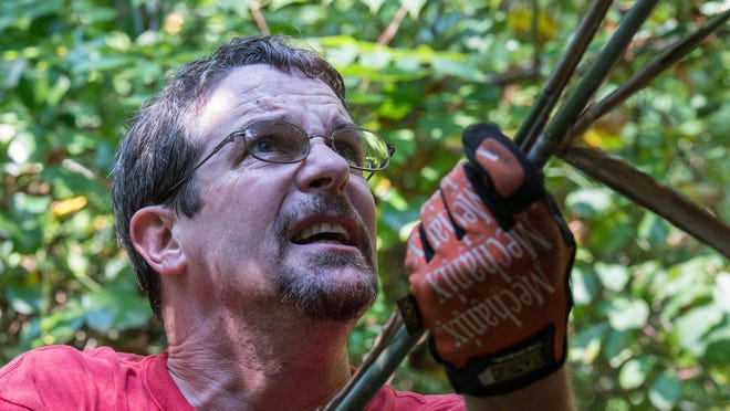 Mike Perry of the Eastern Shore International Mountain Bicycling Association clears bamboo overgrowth on a trail that runs along North Park Drive in Salisbury.