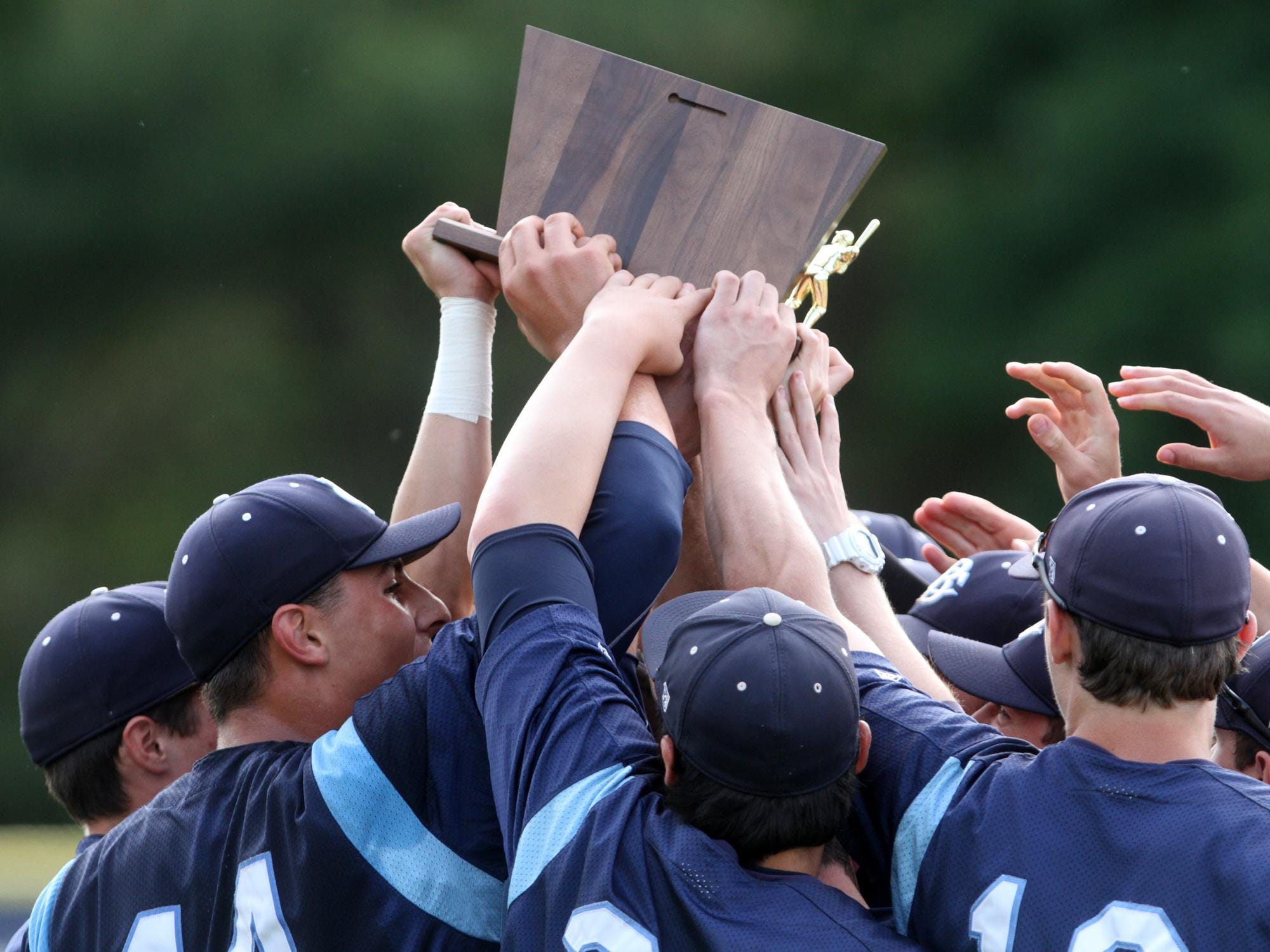 Christian Brothers Academy's baseball players, shown celebrating after the 2-0 win over Bishop Eustace Wednesday in the NJSIAA Non-Public South A championship game, hopes to be celebrating a Non-Public A state championship win over Don Bosco Prep Saturday