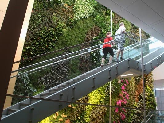 BRI EST 0813 Rutgers Largest Interior Living Wall