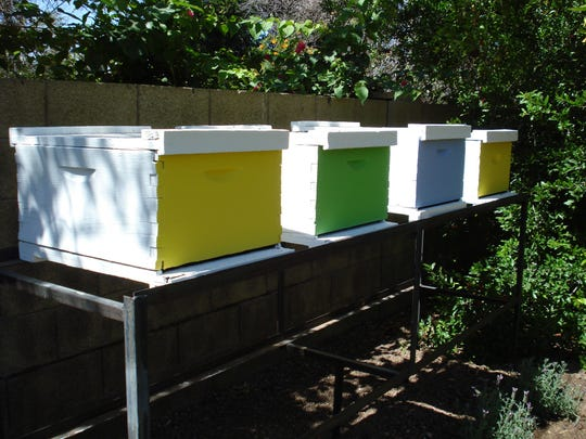 You can build your own honeybee hives to help pollinate your vegetable garden.