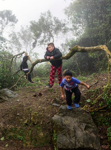 (From left) Cecily Cuahua, 10, and Enrique Cuahua, 5, explore their new backyard as they watch their brother Anthony Cuahua, (second from right) 8, and their cousins Brayan Cuahua, 3, and Emanuel Matlatecatl, 6, play on a tree in the cool, foggy weather in rural Atlanca, a town located about an hour away from Orizaba, Mexico, on Jan. 12.