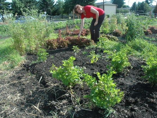 Lorie Walters works in a community garden in Aumsville.