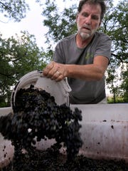 Brian Scalf, the owner of the Winery at Willow Creek, adds more grapes to the bin Saturday, Aug. 5, 2017.