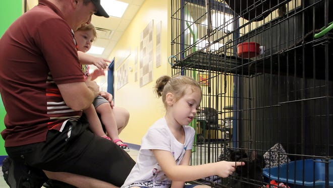 Ryan Wallace, from left, Aliyah Wallace, 2, and Nevaeh Tankersley, 7, play with kittens at the Licking County Humane Society Monday after donating a large amount of food and supplies for the animals. The children chose to ask for the food and supplies instead of birthday presents.