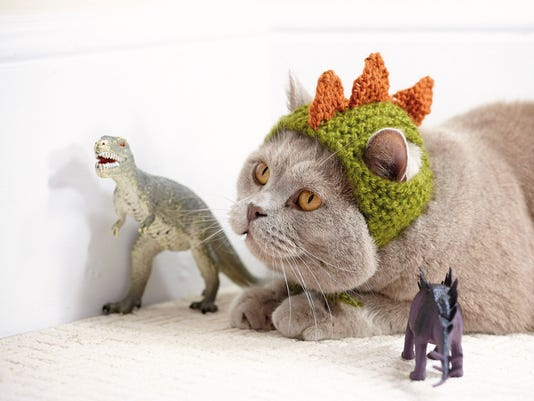 Crafts-Cats in Hats (2)