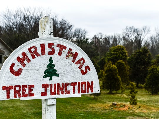 Christmas Tree Junction located on Willey Road in Delaware County has been serving both Marion and Delaware residents since 1996.