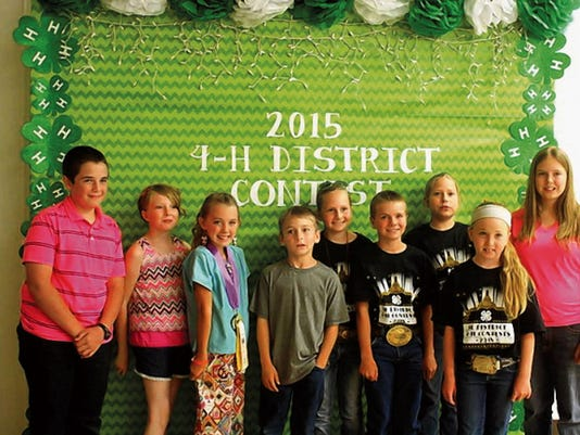 4-H members from left: Zach Rich (Rockin' H), Ryleigh Lamb (Capitan 4-H), Jada Long (Capitan 4-H), Riley Gallacher (Malpais), Karleigh Erramouspe (Corona), Calvin Autrey (Corona), Teagan Washburn (Corona), R.J. Lucero (Corona) and Skylar Jobe (Rockin' H).