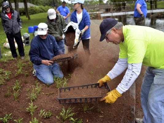 Rotary Club of York member Dave Hoffman, right, shakes peat moss over freshly planted wetland plants on a floating island at Kiwanis Lake on Thursday. About 140 seedling were planted, which will root through the base of the island.